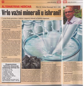 Magazine San Article by Vedran and Mirjana Hasanagic